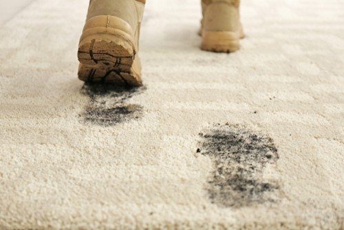 rug-cleaning-mud