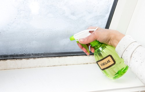 Vinegar-cleaning-solution