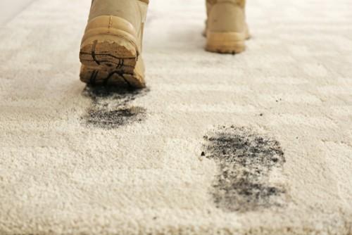 Removing carpet dirt