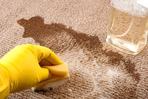 Simple DIY Carpet Cleaning Tips