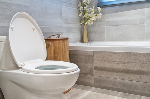 How Often Should I Clean The Toilet Bowl?